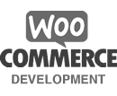 Woocommerce Developer Accreditation